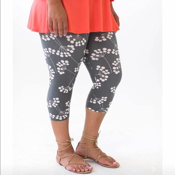 7d31684b9c24f6 Agnes & Dora Pants | Brand New Agnes Dora Capri Leggings | Poshmark